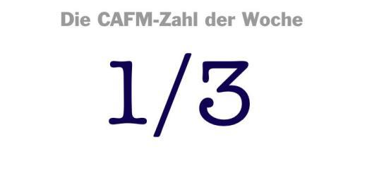 Die CAFM-Zahl der Woche ist die 1/3, denn das ist ungefähr die Ausstellungsfläche, die CAFM-relevante Aussteller bei der INservFM 2017 belegten