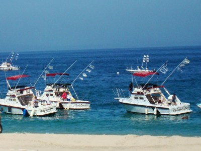 Verdugos Fishing Fleet