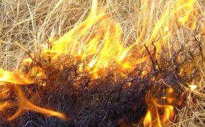 Pericolo incendio alto in tutto il Sud Sardegna per martedì 14 agosto