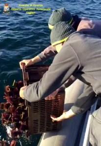Cabras – FLAG Pescando promuove la creazione di imprese della pesca