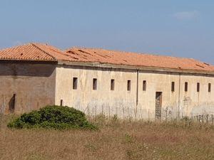 Degrado sull'Asinara: l'Assessore Gianni Lampis risponde