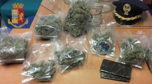 Quartu. Un arresto e una denuncia per produzione e detenzione di sostanze stupefacenti