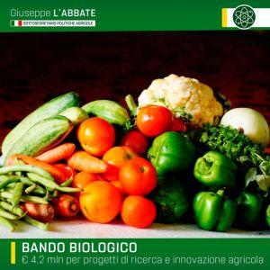 Agricoltura, bando MIPAAF: 4,2 milioni di euro per la ricerca sul biologico