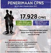 Pengumuman Penerimaan CPNS Periode II Tahun 2017