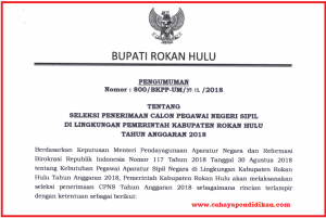 Formasi Seleksi Penerimaan CPNS Kabupaten Rokan Hulu Tahun 2018