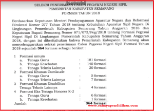 Formasi Seleksi Penerimaan CPNS Kabupaten Semarang Tahun 2018