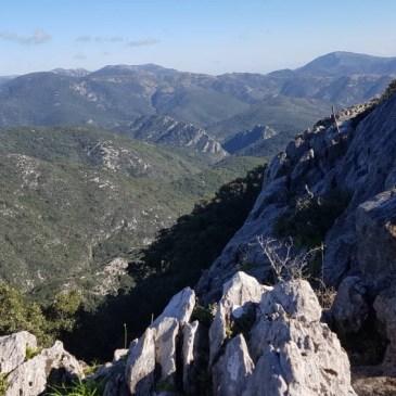 Domenica 25 Novembre 2018 – Foresta Marganai (Domusnovas)