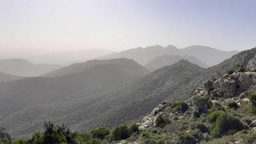 Domenica 7 Marzo 2021 – Monte Arcosu