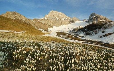 29 luglio 2020 – Sentiero dei fiori (Valle Brembana)