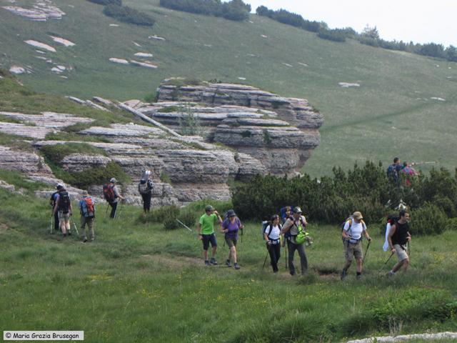 SENTIERO DELLA PACE 2010 - 2a tappa - Monte ALTISSIMO (Monte Baldo) (7)
