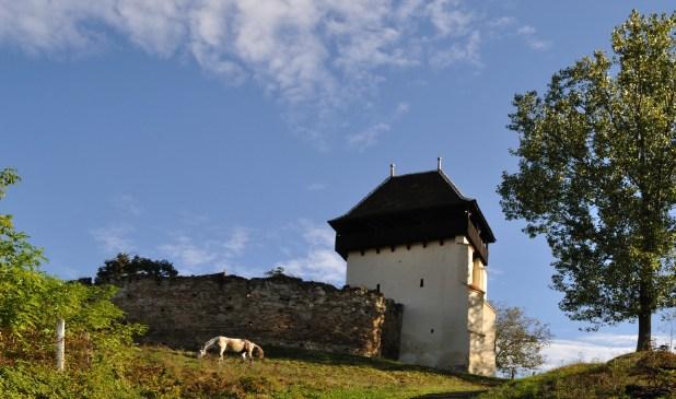 biserica fortificata tapu