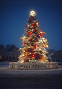 outdoor-christmas-tree-utah-images