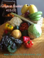 Bountiful Basket 2
