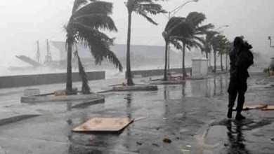 عاصفة جونجداري