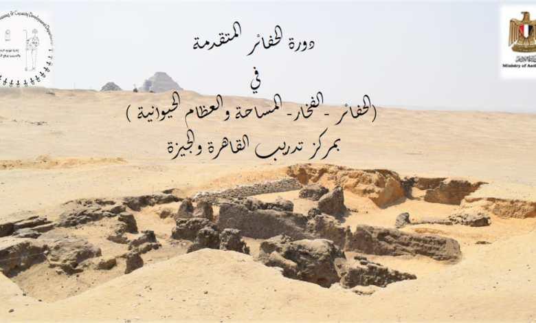 مدرسة الحفائر المصرية