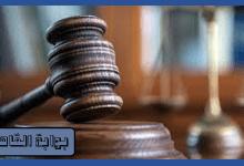 المؤبد لـ 4 متهمين لقتلهم عاملًا تدخل للدفاع عن سرقة مواطنين بالإكراه بالحوامدية