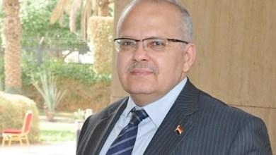 غدًا.. رئيس جامعة القاهرة يفتتح الدورات التدريبية لمشروع الألف قائد إفريقي