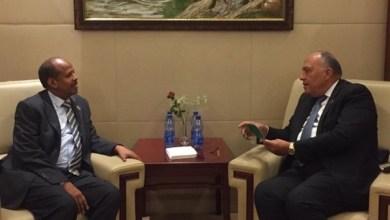 وزير الخارجية يبحث إقامة منطقة حرة لوجستية مصرية في جيبوتي