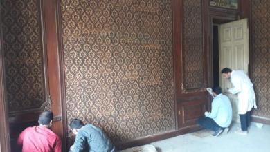 قصر الشناوي