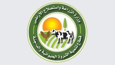 قطاع تنمية الثروة الحيوانية والداجنة