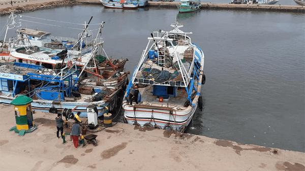 ميناء البرلس.. إنطلاق 180 مركب صيد بعد عودة حركة الملاحة لطبيعتها