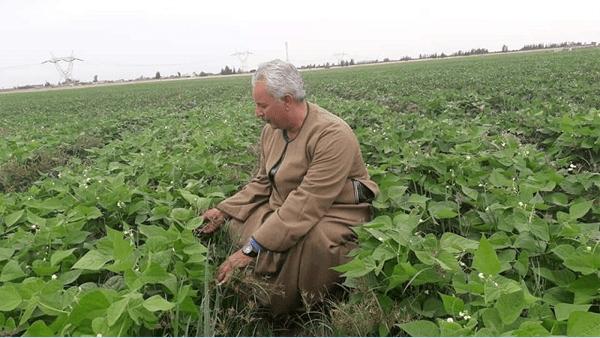 الفلاحين: تطوير قرى محافظة المنيا يسير بسرعة السلحفاة