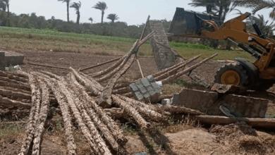 حملات مكثفة لإزالة التعديات على الأراضي الزراعية بالفيوم خلال إجازة العيد