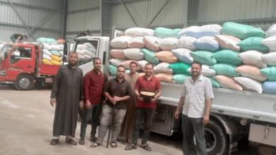 صوامع كفر الشيخ تستقبل 146 ألفا و660 طن قمح من المزارعين