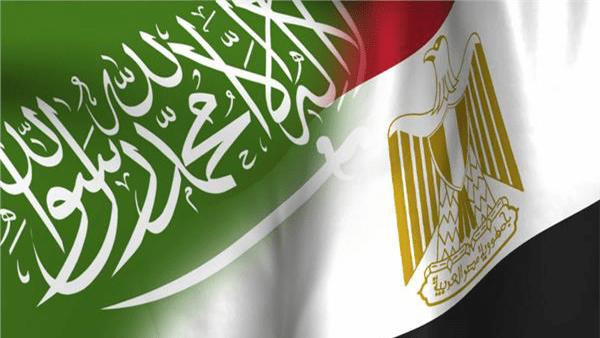 مصر والسعودية يبحثان تطورات الوضع في فلسطين