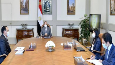 الرئيس السيسي يتابع جهود التعاون مع الشركاء الدوليين والمؤسسات التنموية