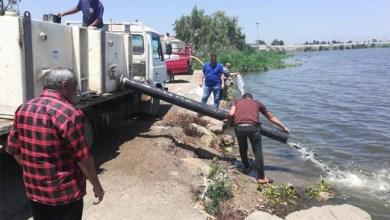 إلقاء 750 ألف وحدة زريعة سمك في بحيرة البرلس