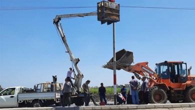 زراعة وصيانة أعمدة الكهرباء التالفة على رافد الطريق الدولي بكفر الشيخ