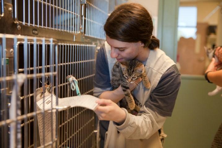 2015-07-29 RP Animal Shelter-68