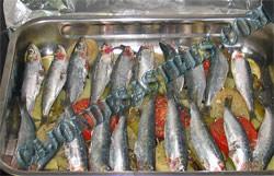 receta de sardinas con guarnicion