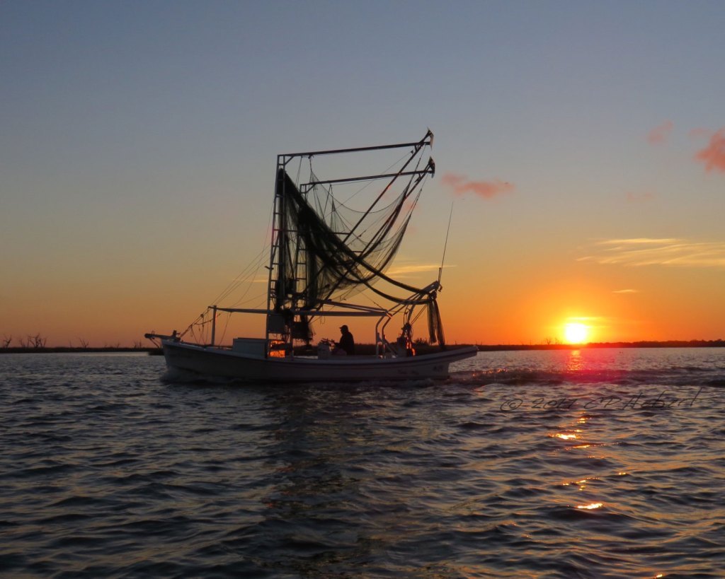 A Lafitte Skiff set up with skimmers, also called butterfly nets, also called po-pierre nets is ready to start her evening push to catch shrimp.