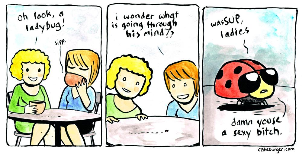 Ladies Bug