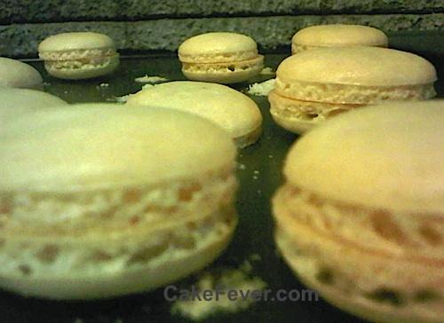 Tips Membuat French Macaron Anti Gagal Untuk Pemula