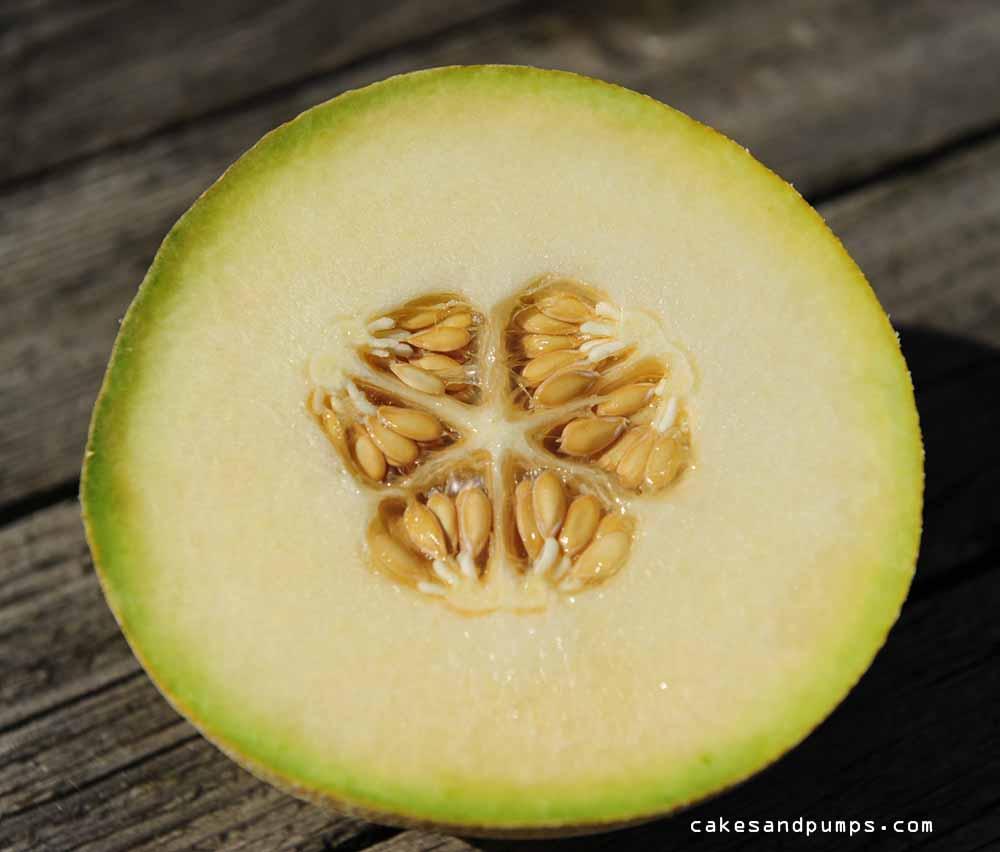 Meloen voor een smoothie