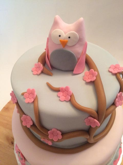 pink-grey-owl-baby-shower-cake-2