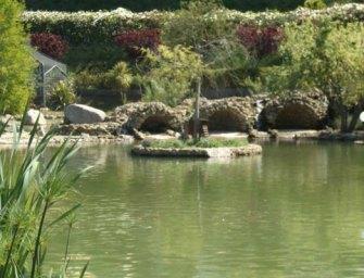 Escursione nel Parco della Biodiversità