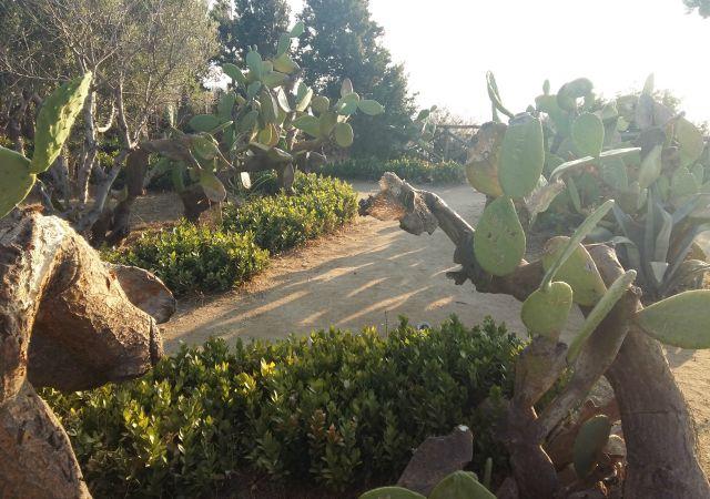 giardino santa maria dell'isola