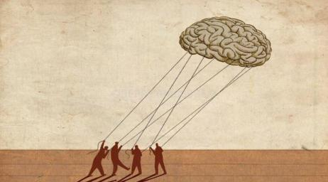 brains2south