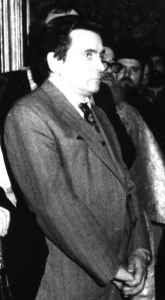 Imagini pentru profesorul Nicolae Stoicescu,
