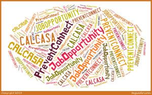 Job Opportunity at CALCASA