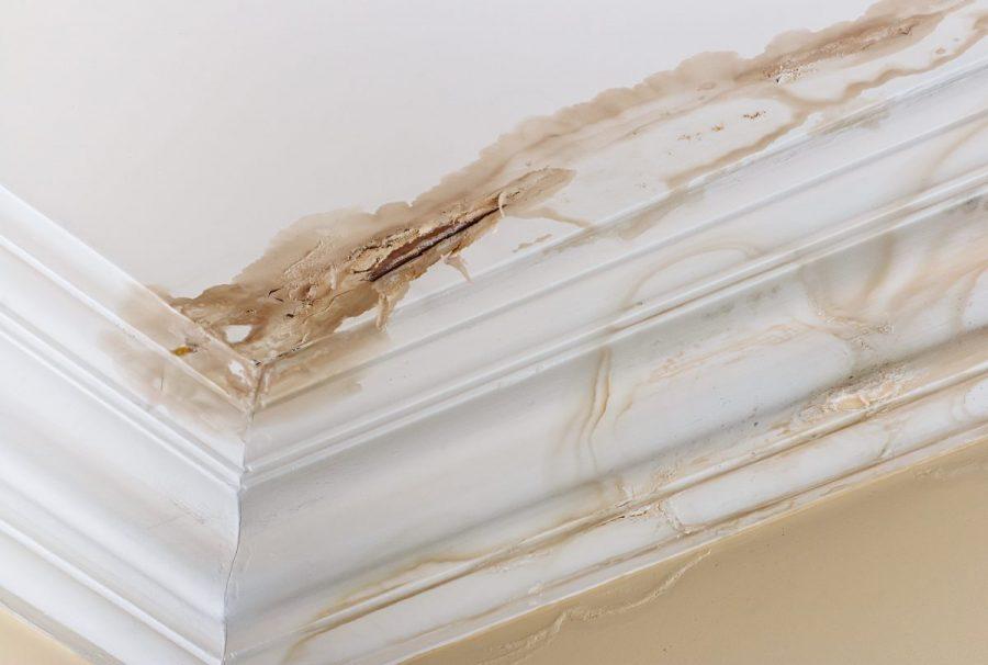 Arreglar goteras y humedades en el techo