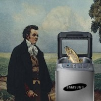 Samsung vs Schubert