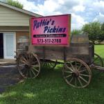 Pattie's Pickins