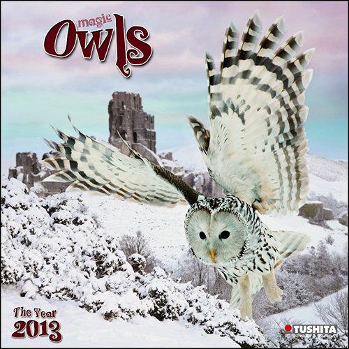 Owls Wall Calendars  2017
