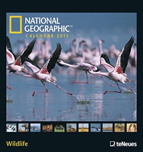 Nature Wildlife photography wall calendars 2017