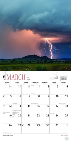 Wild Weather Calendars